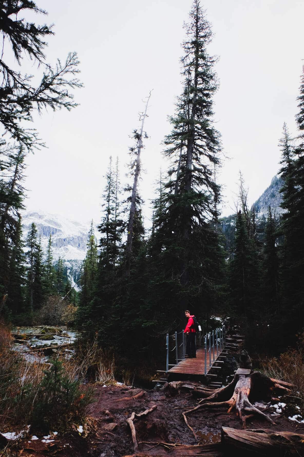 Hike to Upper Joffre Lake