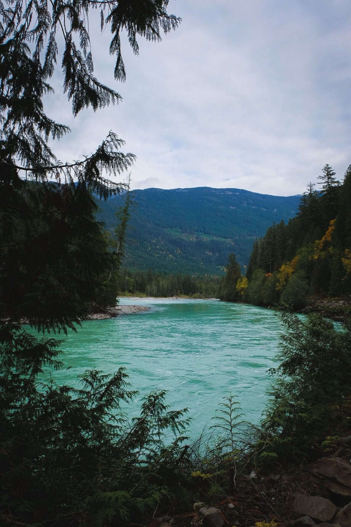Driving to Sloquet Hot Springs, British Columbia