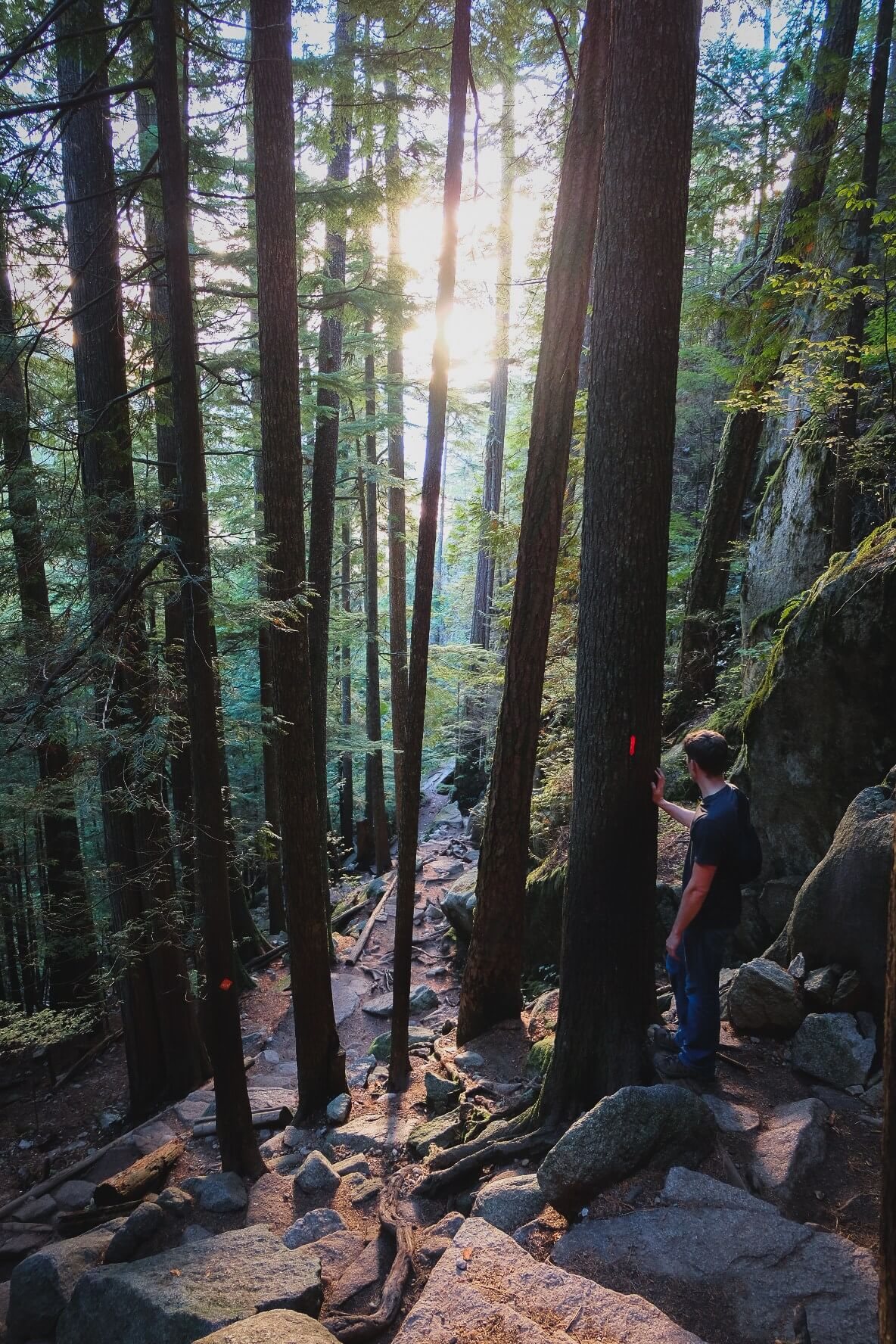 What its like to hike the Stawamus Chief