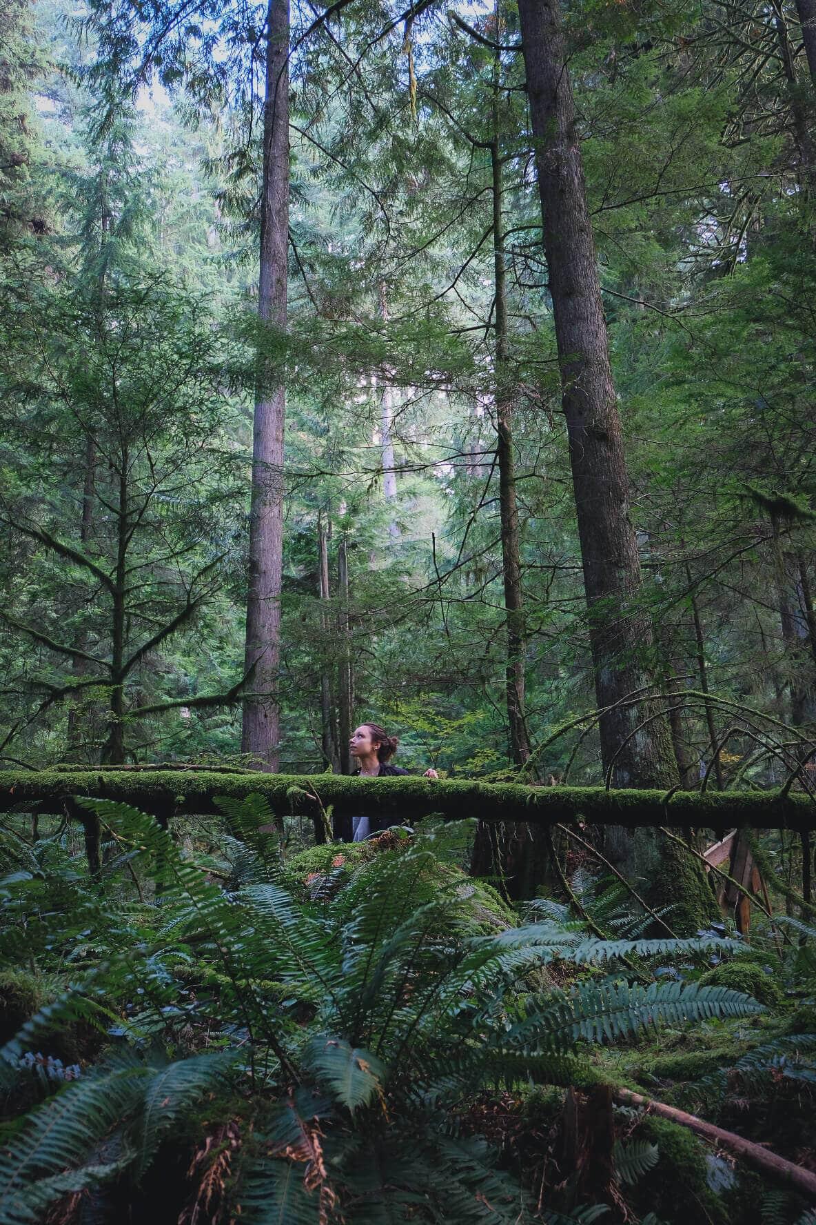 Best things to do around Vancouver, British Columbia