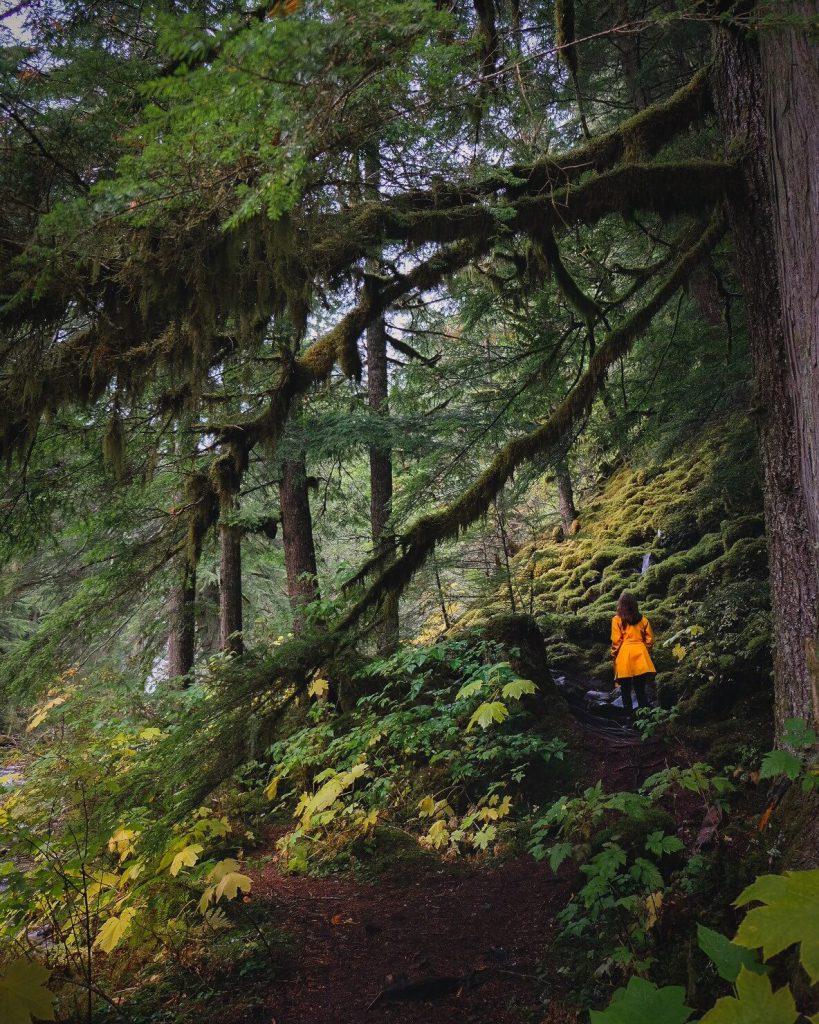 5 Day Road Trip through British Columbia