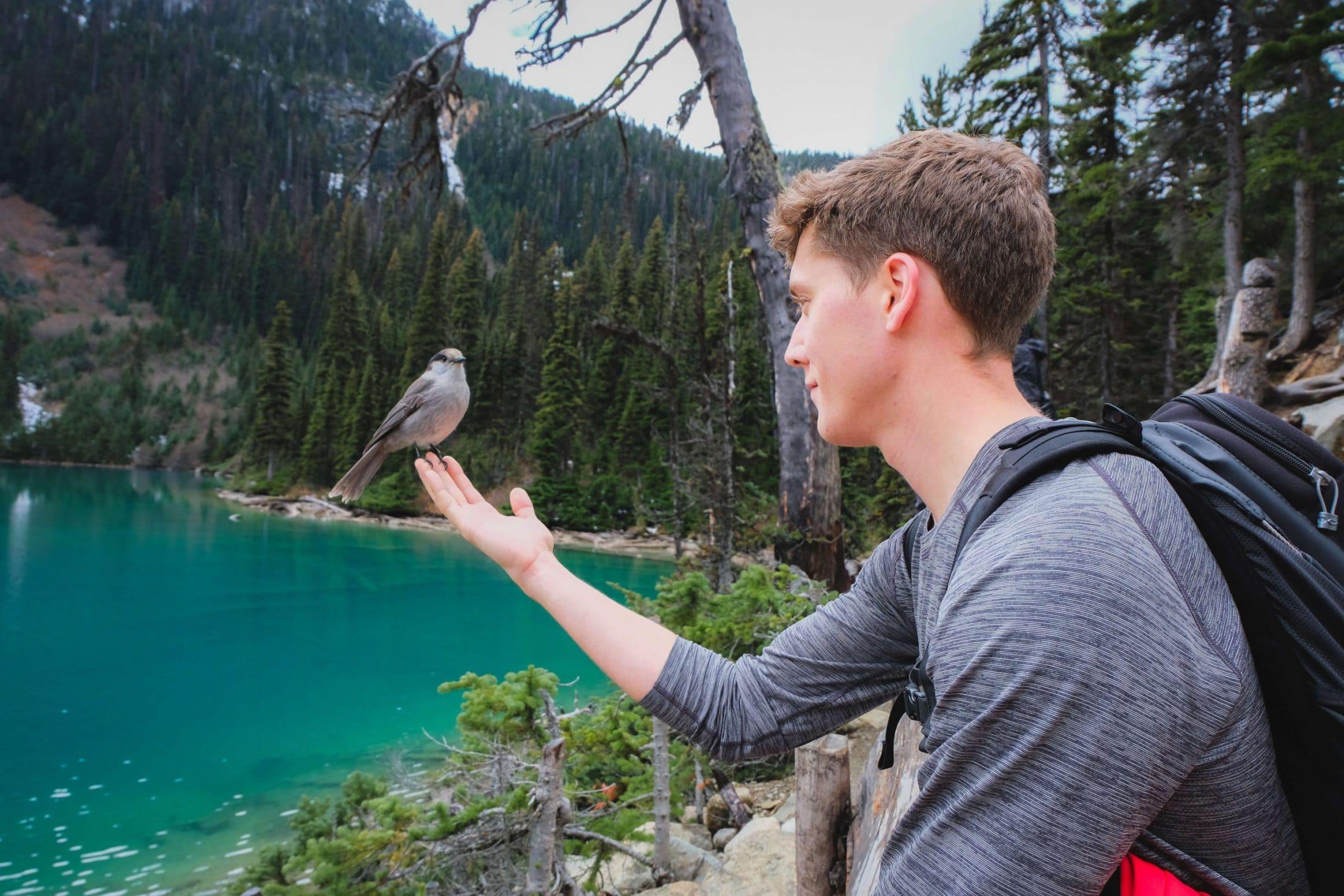 Joffre Lake Hike, British Columbia