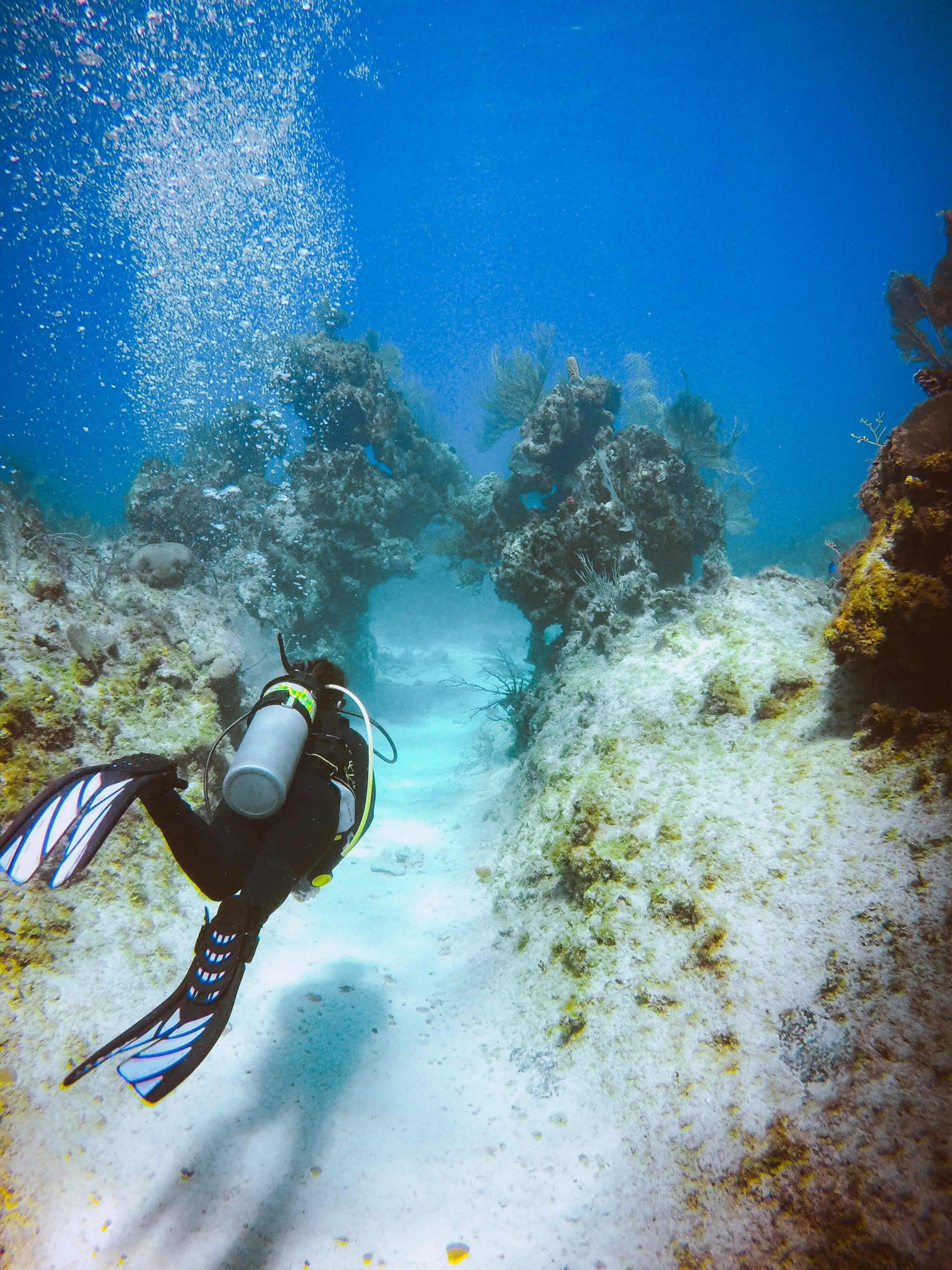 Cayman Islands coral reef