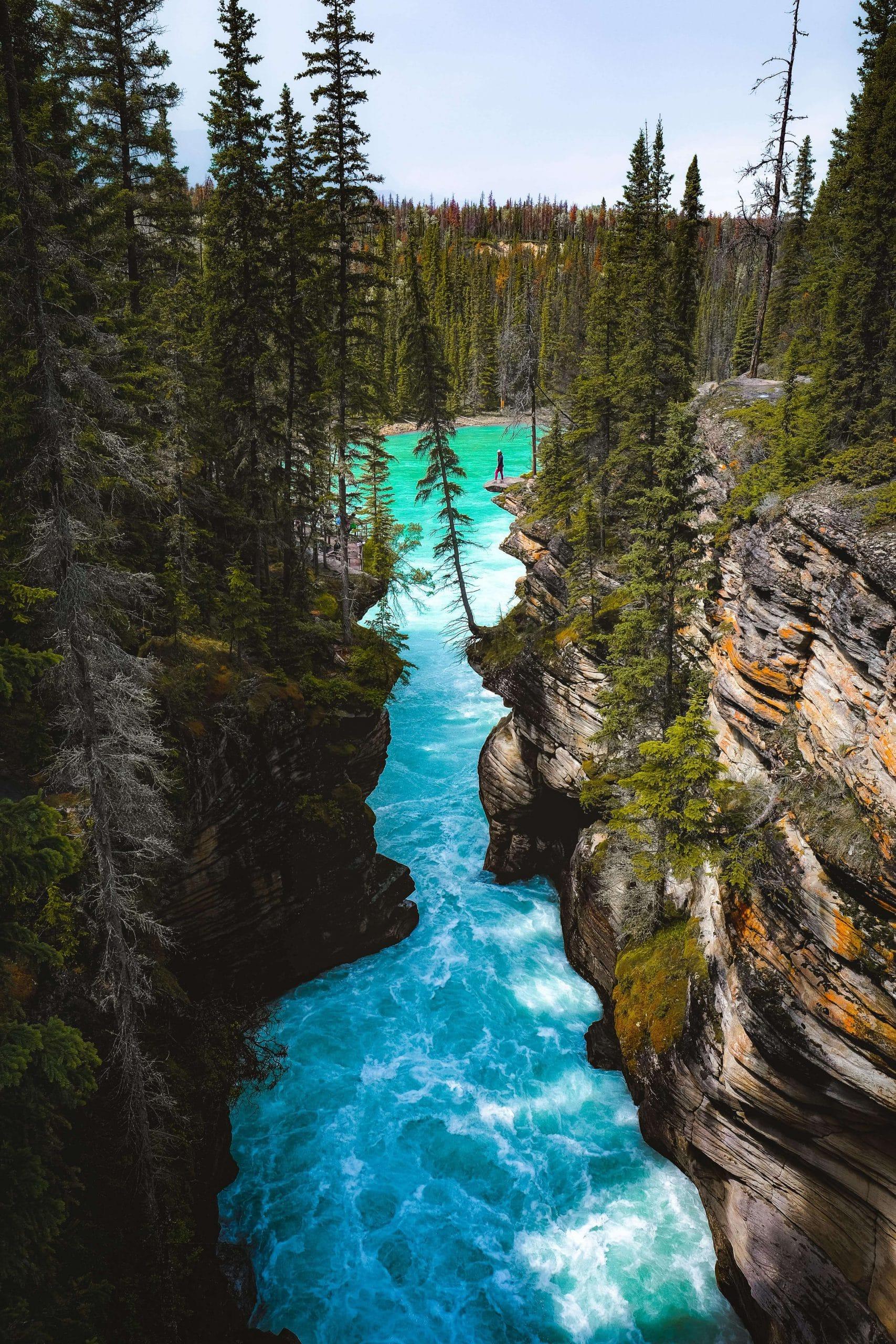 Hiking in Jasper National Park - saving money in Banff