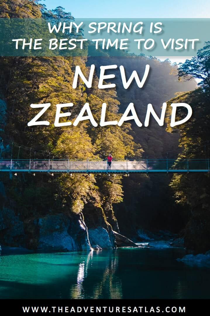 Why Spring is the Best Time To Visit New Zealand