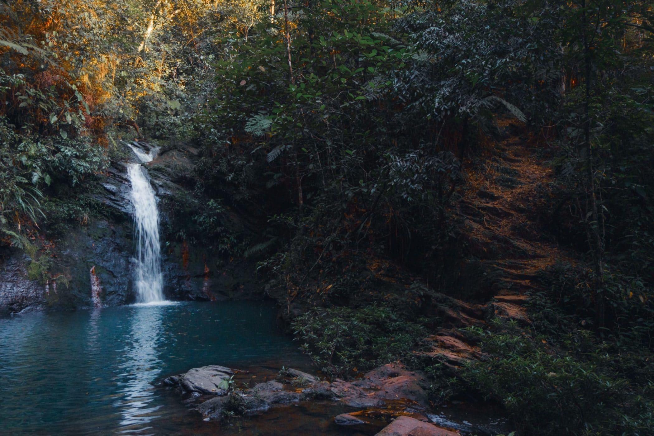 Lower Tiger Fern Falls