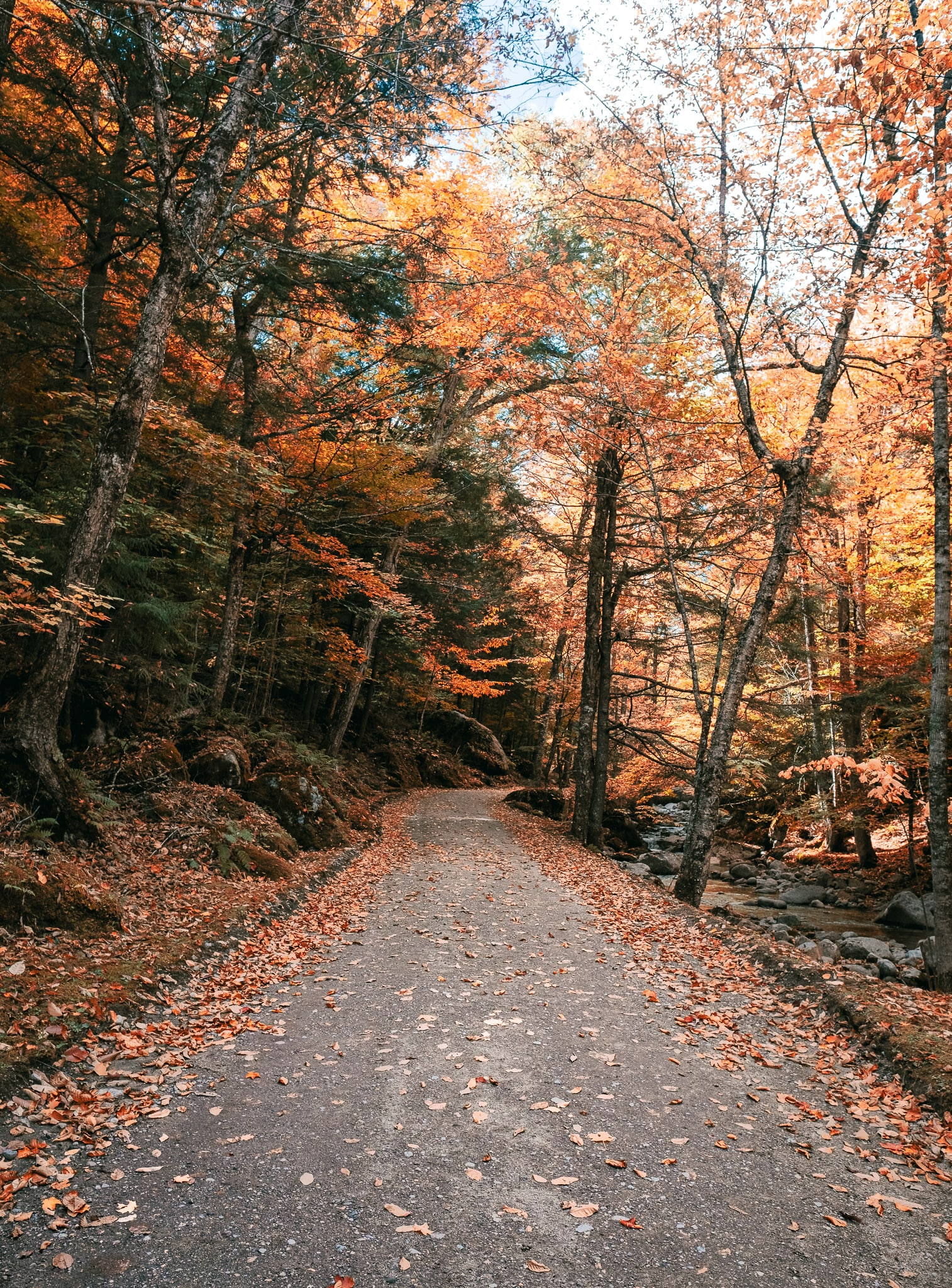 Lake Road in the Adirondack Mountain Reserve, Upstate New York