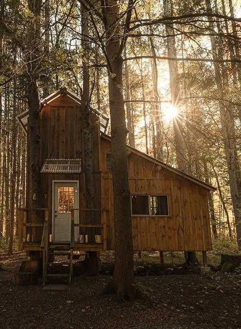Unique cabin near Old Forge NY