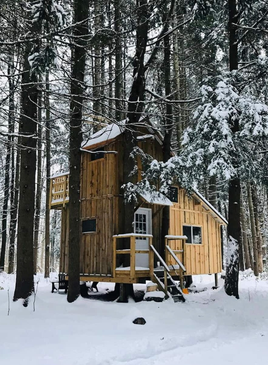 Unique Cabins to rent near Old Forge in the winter