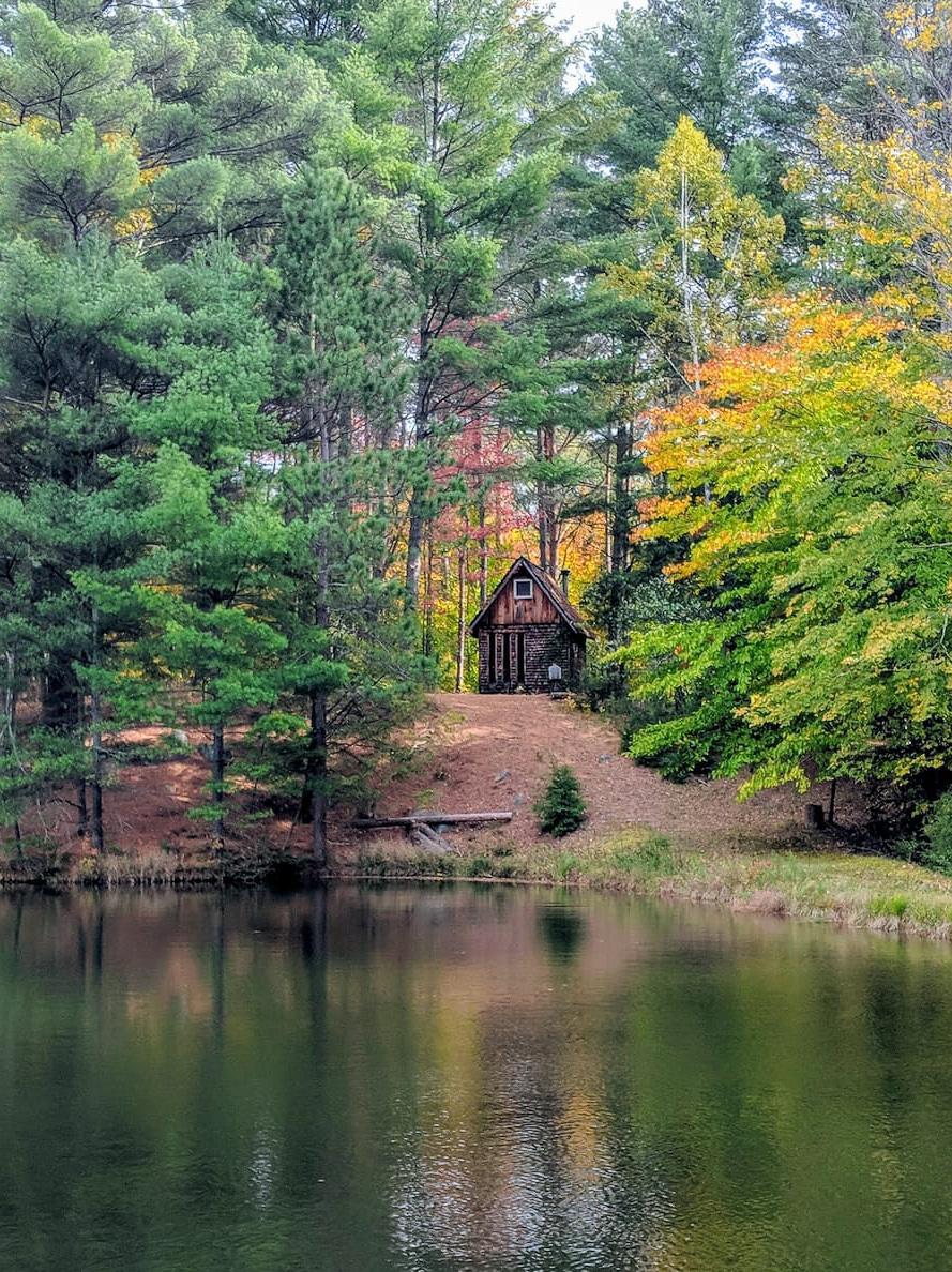 Adirondack Tiny Cabin