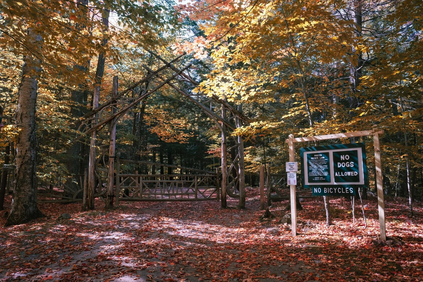 Pine entrance gate to Lake Road on the Adirondack Mountain Reserve