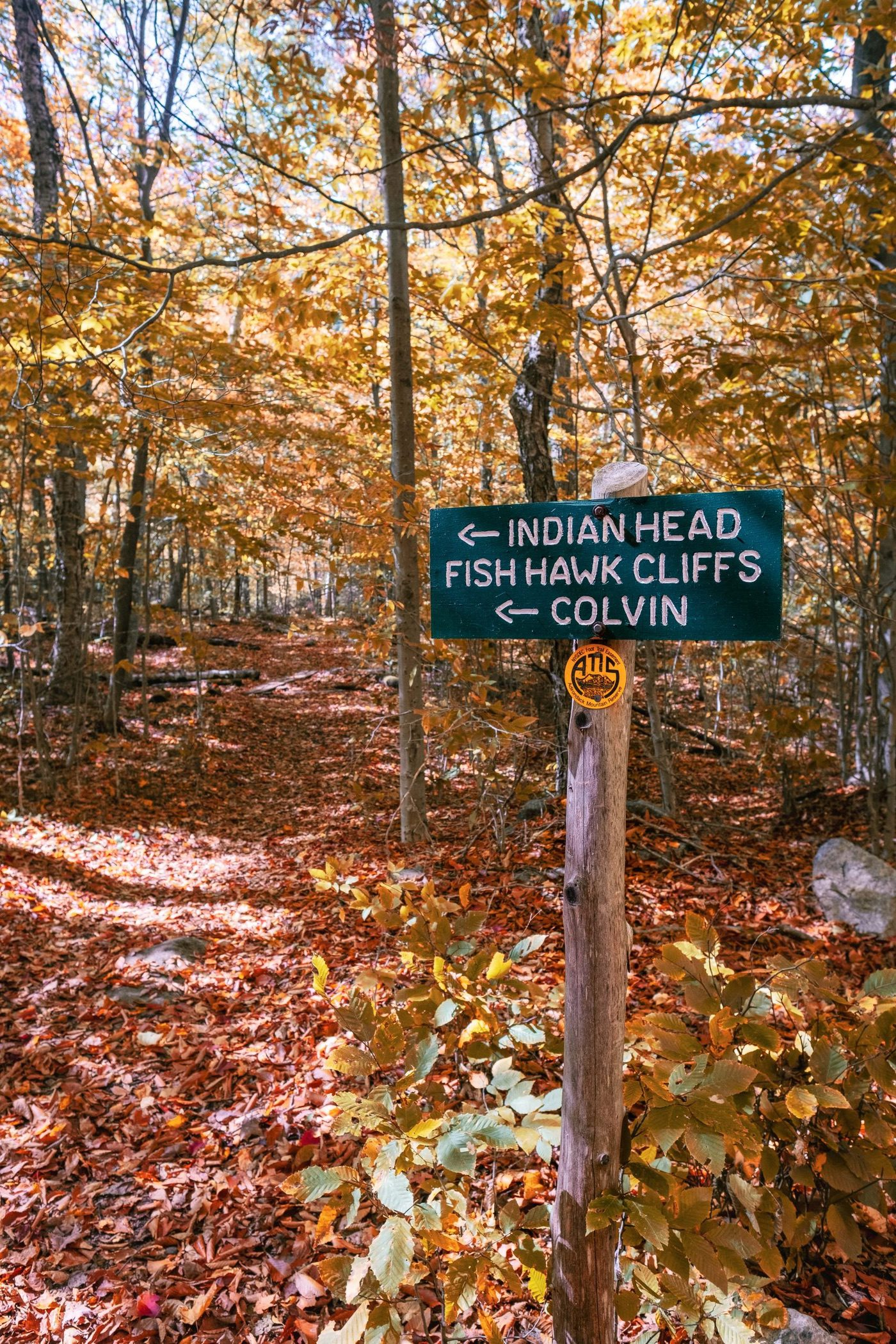 Foot trail to Indian Head and Fish Hawk Cliffs