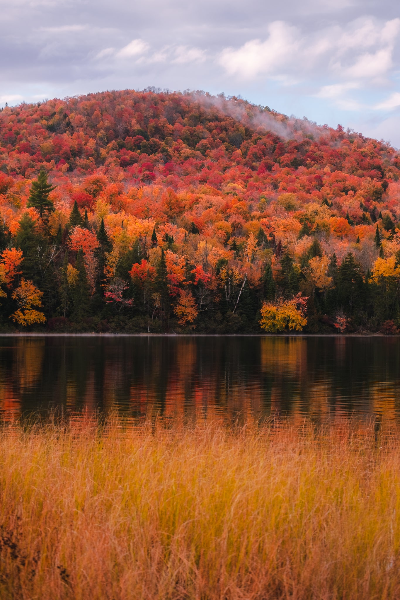 Peak foliage season in New York