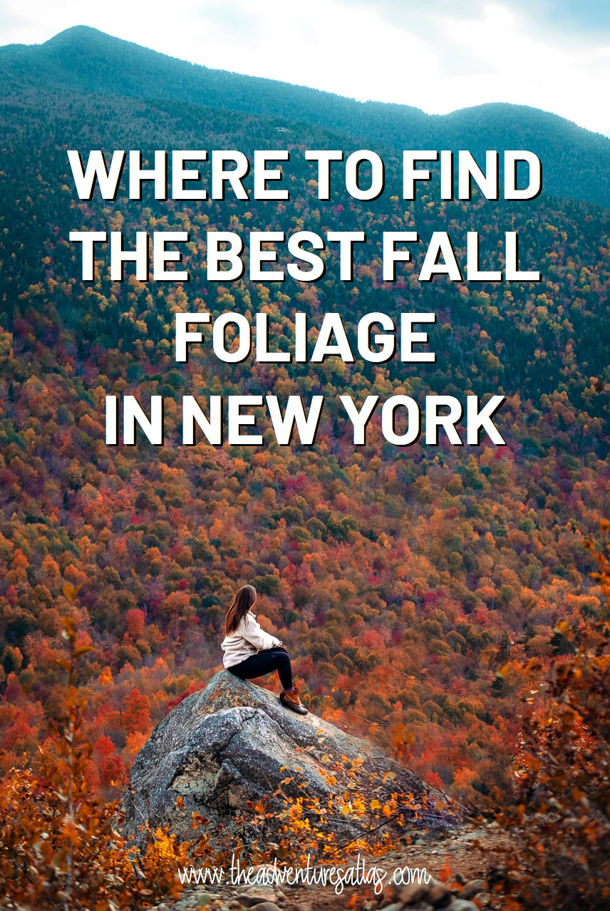 Where to find the best fall foliage in New York