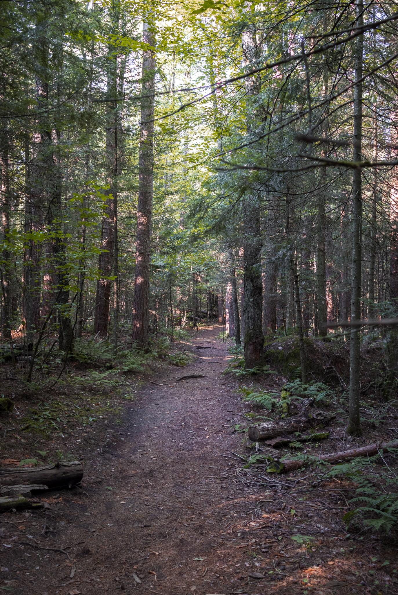 Hiking Mount Van Hoevenberg