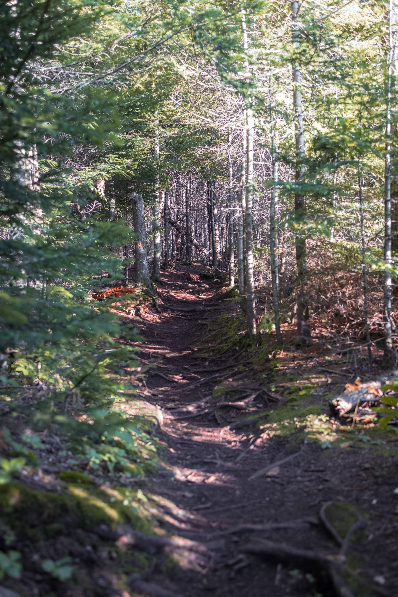 Hiking in Lake Placid