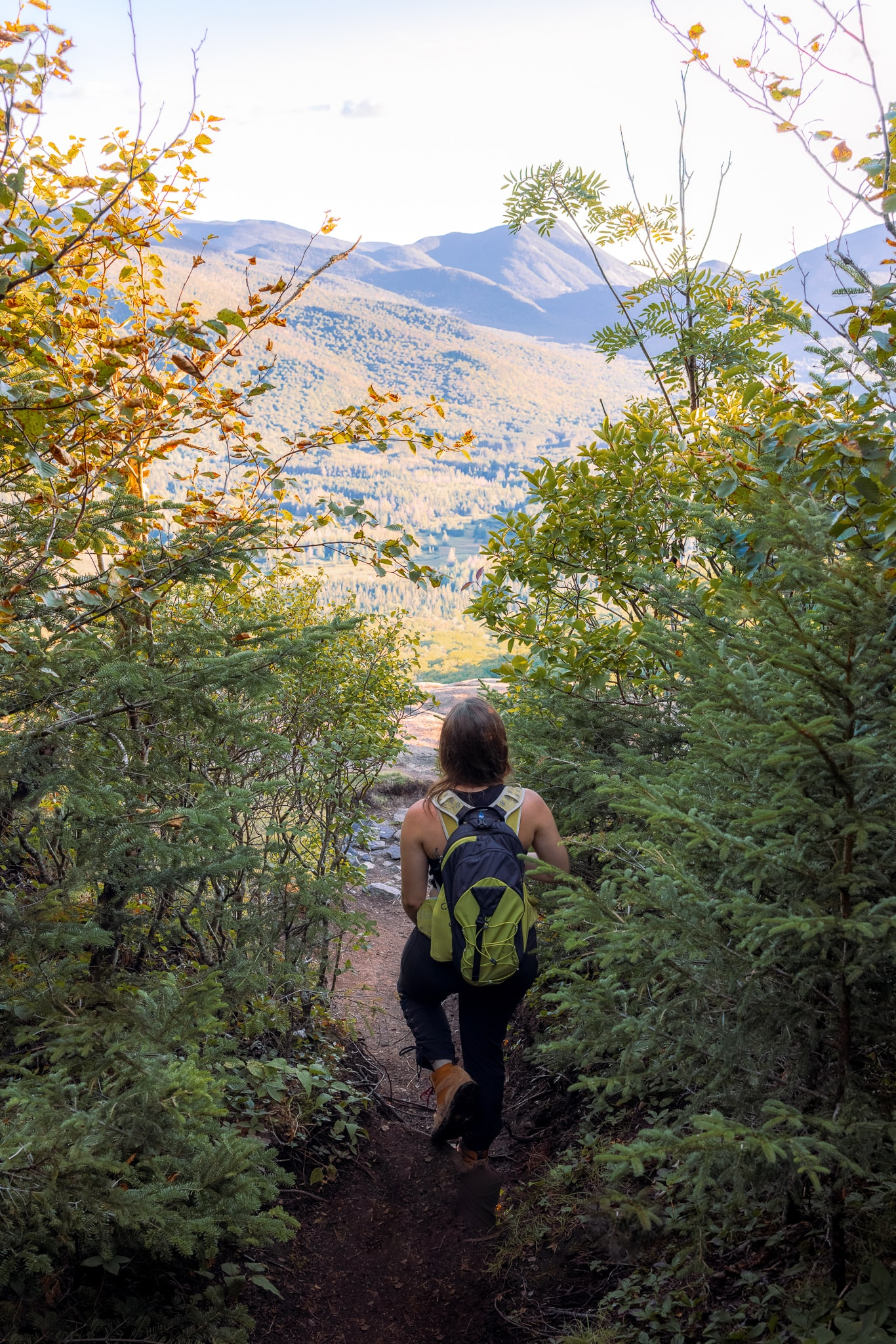 Short hiking trail near Lake Placid